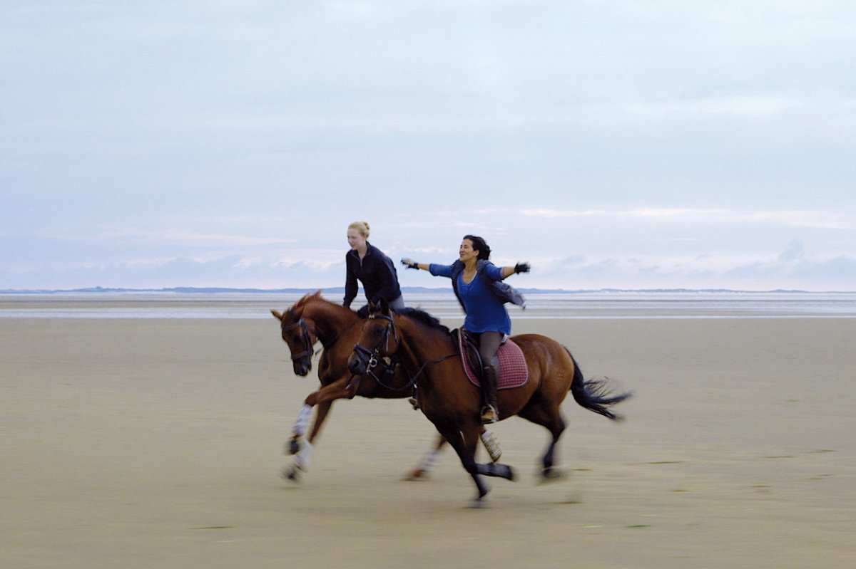The unbounded flatlands of Monika Treut's Of Girls and Horses